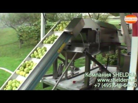 Мобильный мини-завод по производству натурального сока