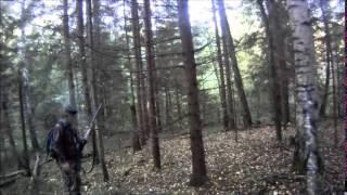 Охота на зайцев 2014.(Видео добычи зайца)