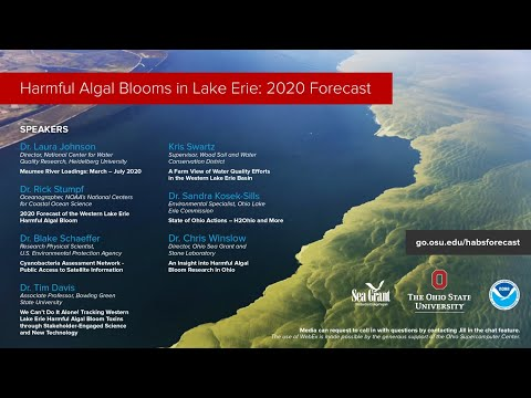 NOAA Forecast For Harmful Algal Blooms In Lake Erie 2020