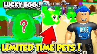 LIMITED TIME LUCKY EGG AND SEA SHELL ISLAND IN BUBBLE GUM SIMULATOR UPDATE 19!! (Roblox)