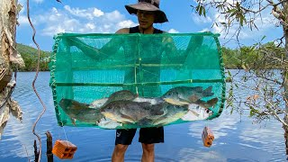Amazing Fish Trap How to create a primitive fish trap with nets and bamboo NVY Catch Cook