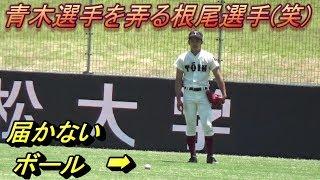 遠投でボールが届かない青木選手をイジる根尾選手(笑)&フェンス際での大遠投で肩の強さを披露! thumbnail