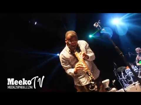Ronnie Laws Live At Jazz Festival Moody Gardens