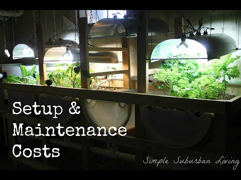 Aquaponics System Design - Setup and Maintenance Costs