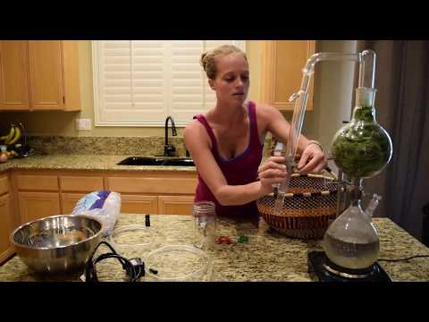 how to make your own essential oils youtube. Black Bedroom Furniture Sets. Home Design Ideas