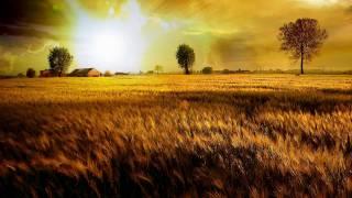[HD] Adam Nickey - In Motion (Andy Blueman Remix)