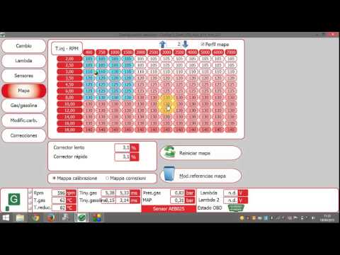 Video 16: Vogels Autogas Software - Mapa GLP con motor a Rel
