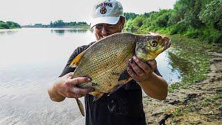 Как поймать огромного леща Рыбалка на фидер Удачный улов