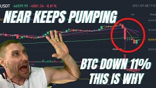 NEAR KEEPS  PUMPING  ALGO  HEGIC EXPLODE  CRYPTOCURRENCY AND BITCOIN LIVE!!!!!!