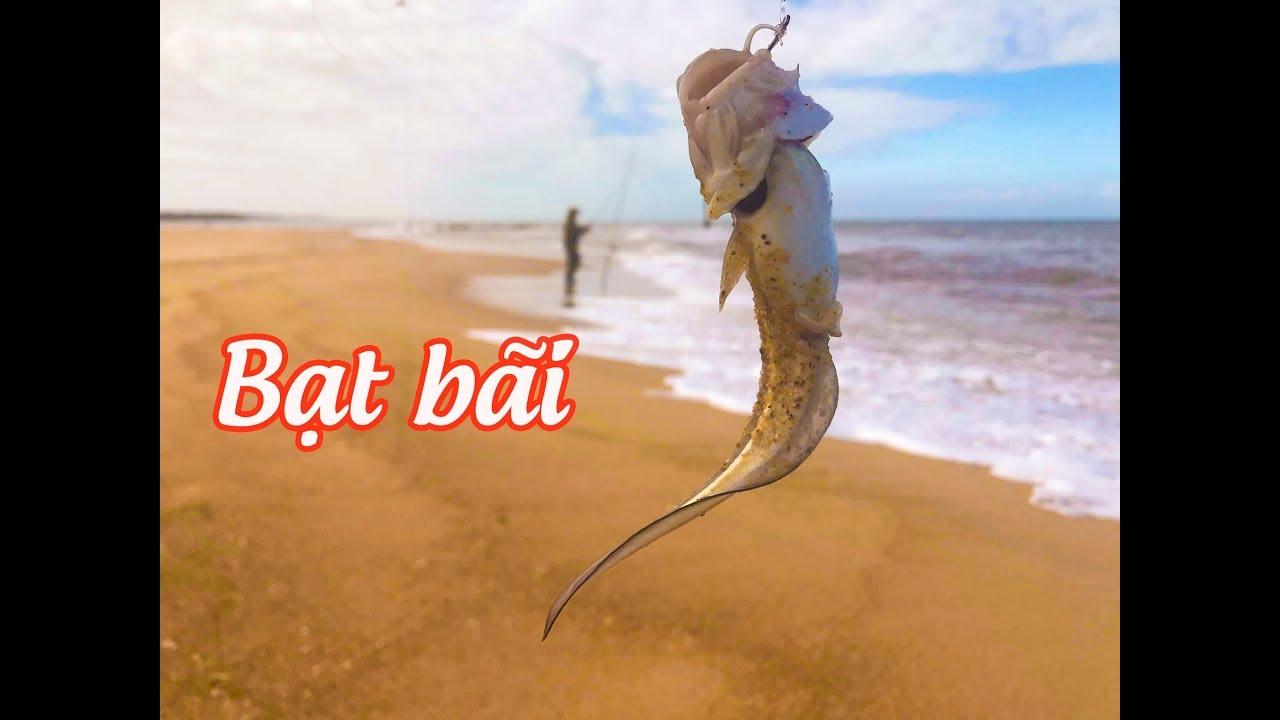 Thú vị bộ môn câu cá bãi biển, quá nhiều loại cá lạ lùng