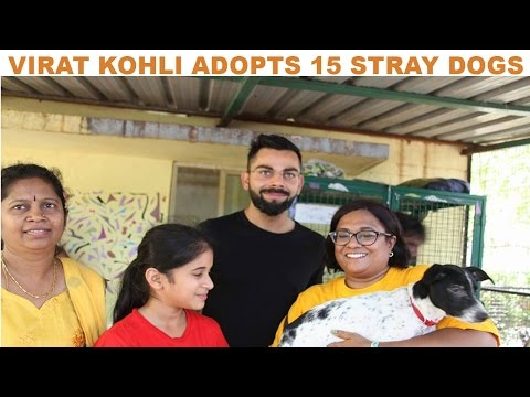 Virat Kohli Adopted 15 Stray Dogs in Hindi | Must Watch Video | The Ultimate Channel