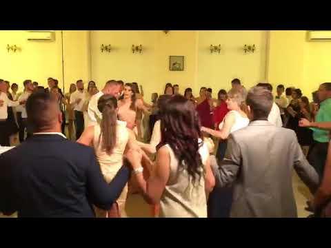 Anuta Motofelea - Tăte sogorițăle ( live-nunta)