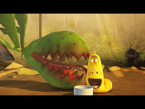 LARVA - PLANT BEST FRIEND | Cartoon Movie | Cartoons For Children | Larva Cartoon | LARVA Official