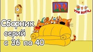 Три кота - Сборник с 36 - 40 серии...