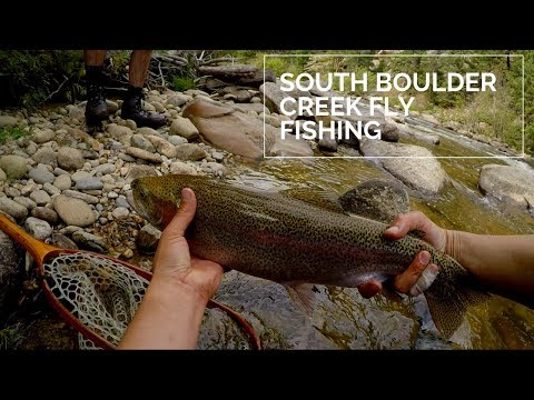 Chasing Fatty McFatterson - Biggest Fish Of The Year - South Boulder Creek - Fly Fishing - Sept 2019