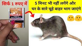 बिना मारे ही चूहों को भगाने का ऐसा तरीका जिससे चूहा आपके घर में दोबारा घुसने की हिम्मत नहीं करेंगे