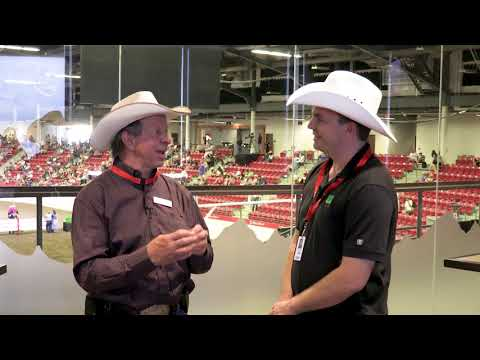 Working Performance Horse Interview Calgary Stampede