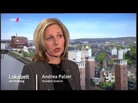 Lokalzeit aus Duisburg 19.05.2016 mit Andrea Palzer von Martin Rütter DOGS Moers/Duisburg