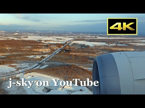 [4K] ANA Boeing 787's Flight New Chitose Airport Landing in Snow / 全日空 雪の新千歳空港 着陸