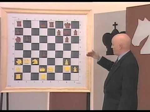 Curso avanzado de ajedrez pdf