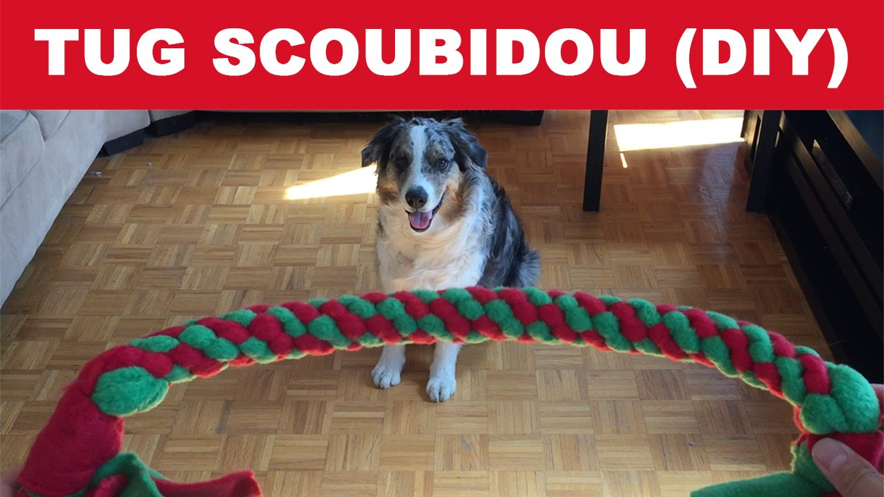 diy comment fabriquer un tug scoubidou pour votre chien. Black Bedroom Furniture Sets. Home Design Ideas