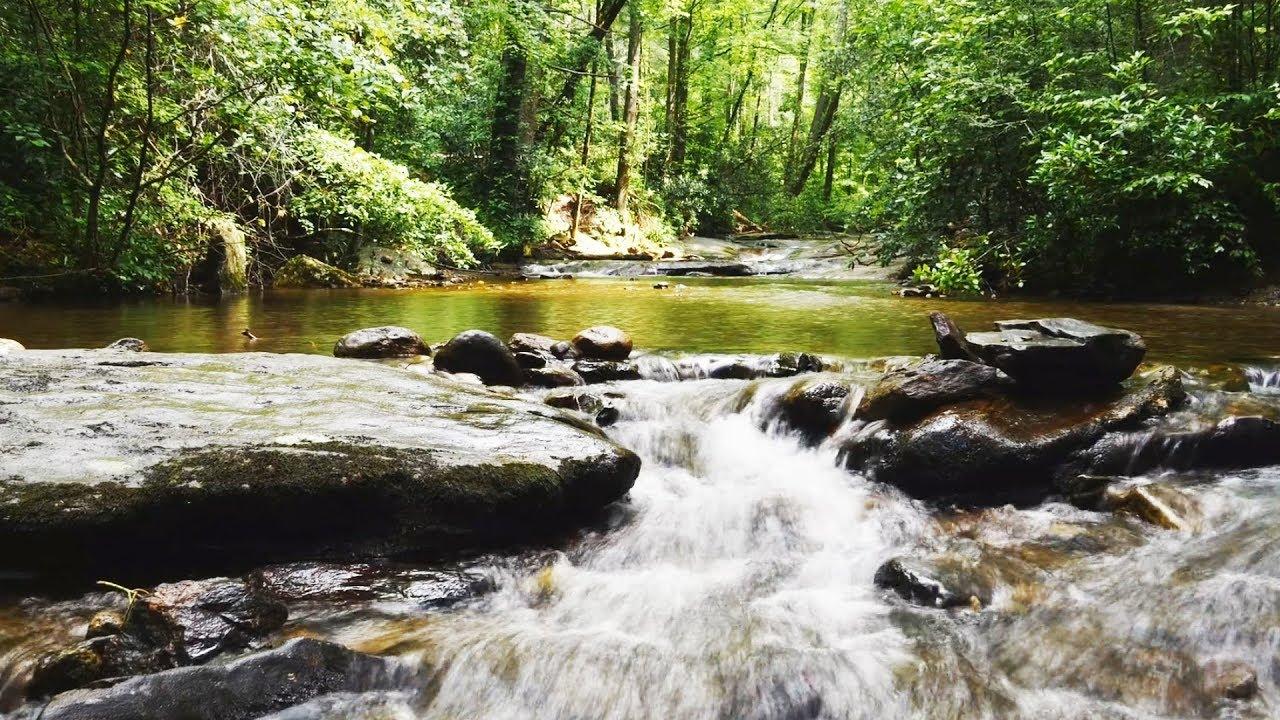 ♪ Stive Morgan - Sacred River ♫