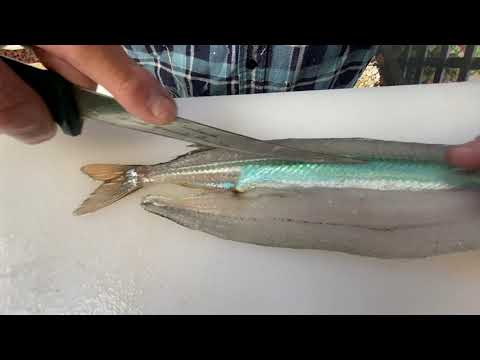 How To Fillet A Garfish. The Best Way. Zero Waste, Perfect Every Time. South Australia