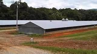 Homes for Sale - 000 Reynolds Bridge Rd. 2-40x 500 Poultry House Ocoee TN 37361 - Vickie Vernon