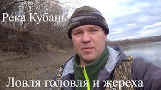 Ловля голавля и жереха на реке Кубань 06 01 21г