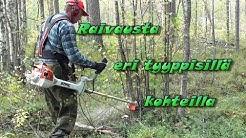 Metsänhoito Metsän raivaus Raivaussahan käyttö Taimikonhoito