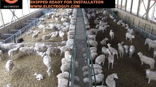 Wireless Barn Cameras For Monitoring Lambing, Calving, Foaling