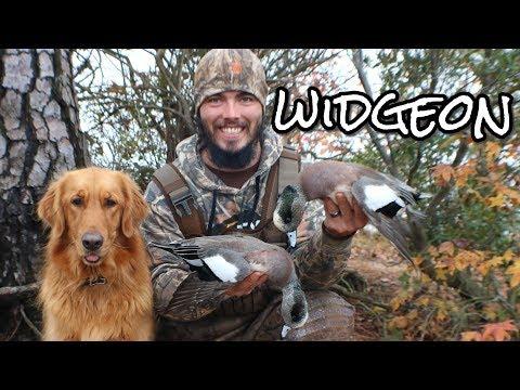 My FIRST Widgeon Georgia Duck Hunting 2018
