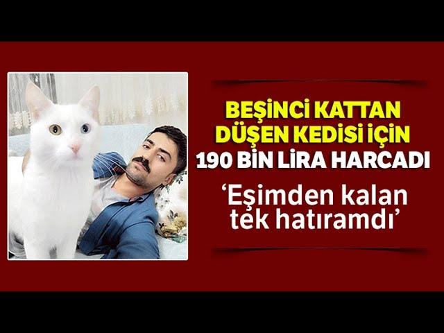 Beşinci Kattan Düşen Kedisi İçin 190 Bin Lira Harcadı Ama...