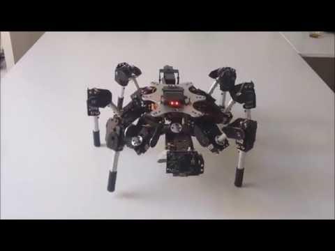 Hexapod tracking video