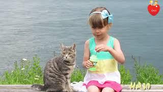 💕cute girl & cat 😸 WhatsApp status video 30 sec