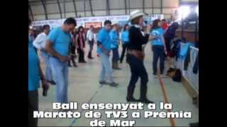 Aveca- line dance-.wmv