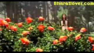 Watch Hindi Movie   Love Story 1981   Hindi Movie   Kumar, Rajendra, Online, Story, Love   Bollywood Video Songs Wallpapers lyrics mp3 Download