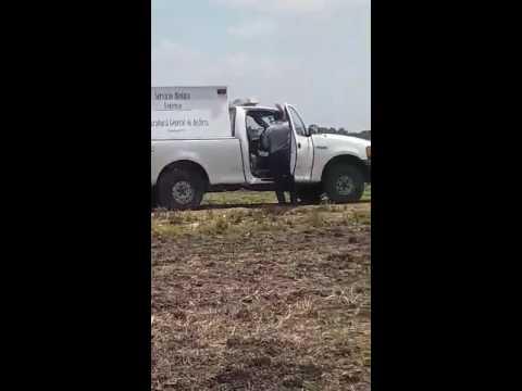 Maniatados y con tiro de gracia: 2 hombres asesinados en Pénjamo