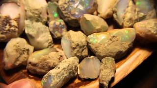 Image result for ethopias opal