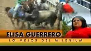 LO MEJOR DEL MILENIO AÑO 2013 GUANARE