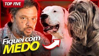 TOP 5 CACHORROS QUE EU MAIS TIVE MEDO DE GRAVAR! | RICHARD RASMUSSEN
