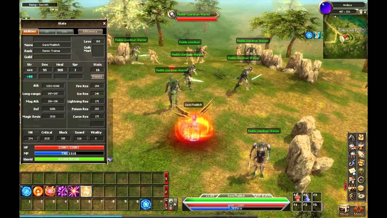 Dekaron Dragon Knight Skill Build