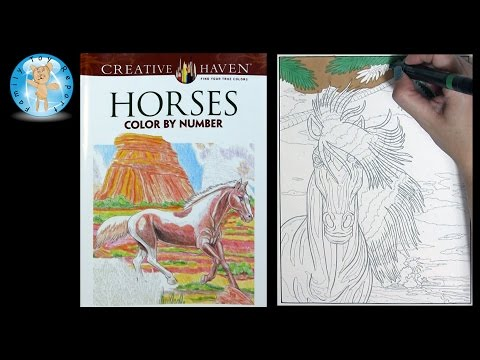 Creative Haven Horses Adult Coloring Book Color By Number Prismacolor - Family Toy Report