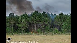 la foudre provoque un feu de forêt