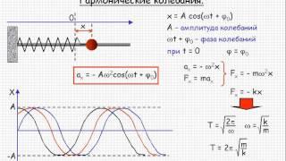 Колебания и волны  Гармонические колебания  Урок 115