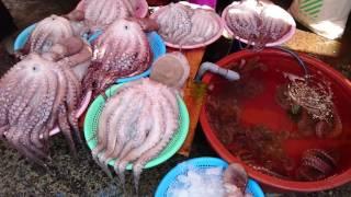Fish market, Busan - South Korea