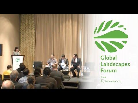 REDD+ as a means to achieve green development in Peru's Madre de Dios region
