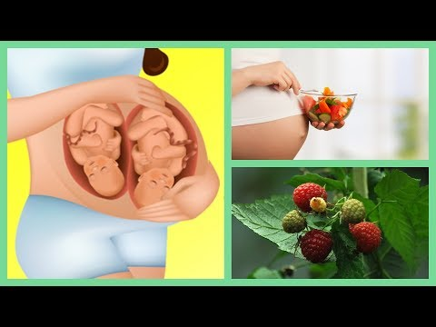 Boost Your Odds for Getting Pregnant Naturally. 3 Herbs for Fertility