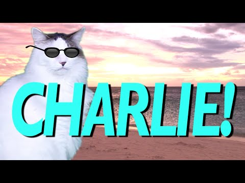 Happy Birthday Charlie Epic Cat Happy Birthday Song