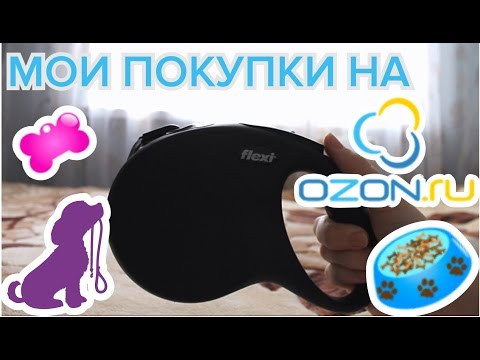 Мои покупки на Ozon: поводок-рулетка для собаки
